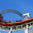 Lessons from Life's Roller Coaster